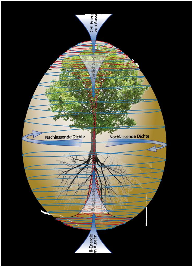 Der Toros-Wirbel um einen Baum - Weltachse